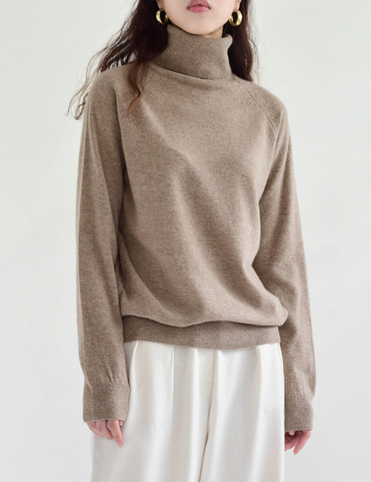 AUTUMN TURTLE-NECK KNIT (6COLOR)